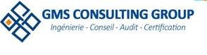 Logo de GMS Consulting Group